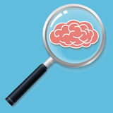 Knowledge finding. Brain search,magnifier and brain Royalty Free Stock Images
