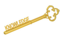 Knowledge - Golden Key, 3D rendering. On white background vector illustration