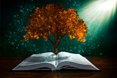 Free Knowledge Is Power Royalty Free Stock Image - 97746106