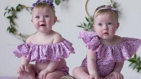 Knubbiga små flickor i rosa kläder som poserar på photoshoot på bakgrund av väggen med dekorcloseupen arkivfilmer