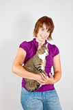 Knuddelige Katze Stockfoto