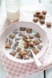 Knusperige Getreide- und Schokoladenkissen mit Milch Lizenzfreies Stockfoto