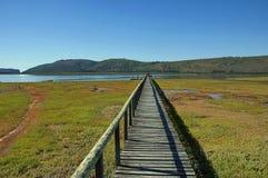 Knysna, de Route van de Tuin, Zuid-Afrika. Royalty-vrije Stock Fotografie