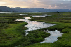 Knysna wetlands at sunset. South Africa stock images