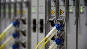 Knyta kontakt förbindelsekabel för lapp för kabel för telekommunikationfiberoptik och blinka av ledd status i datorhall stock video
