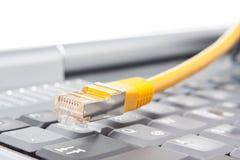 Knyta kontakt kabel, och bärbar dator skrivar Royaltyfri Bild