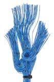 Knyta kontakt kablar, överföring av data i telekommunikationer Royaltyfri Bild