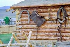Końska nicielnica na ścianie fotografia royalty free