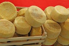 koła ser dzwonili Caciotta w Włoskim języku Obrazy Royalty Free
