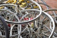 Koło bicykle jechać na rowerze dla czynszu Zdjęcia Stock