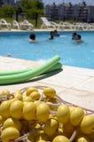 koło dziewczyna ustanawiający gogle wakacyjnego lekcj różowego dennego nadmorski pływackiego pływań koło Fotografia Royalty Free
