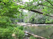 Kołyszący most Krzyżuje Taccoa rzekę Zdjęcie Royalty Free
