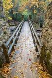 Kołyszący most w jesieni Zdjęcia Royalty Free