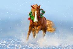 Koń biegający w śniegu tła bożych narodzeń wizerunek nad czerwonym Santa biel Zdjęcia Royalty Free