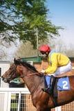 Koń i dżokej zdjęcia stock