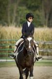 Koń i jeździec Fotografia Royalty Free