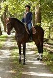 Koń i jeździec w drewnach Fotografia Royalty Free