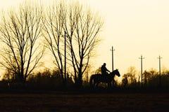 Koń i mężczyzna Obrazy Royalty Free