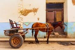 Koń i powozik w Kuba zdjęcie royalty free