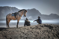 Koń od popiółów Obrazy Royalty Free