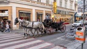 Koń rysująca kareciana przejażdżka Fiaker w Wiedeń, Austria obraz royalty free