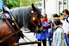 Koń rysujący i pedestrians Zdjęcia Royalty Free