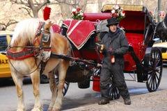 Koń rysujący powozik, Nowy Jork obraz royalty free