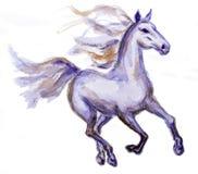 Koń w ruchu Zdjęcia Royalty Free