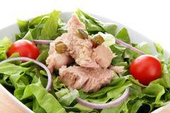 końcówka fis zielenieją tuńczyka międzynarodowego sałatkowego pomidorowego whit Obraz Royalty Free