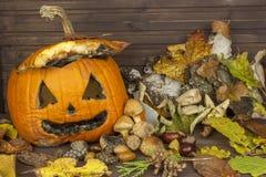 Końcówka Halloween, pleśniowa bania Pamiętać Halloween Głowa rzeźbiąca od bani na Halloween Obraz Stock
