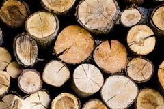 Końcówki beli drewniany tło tonowanie Drewno w stercie - Wizerunek zdjęcie stock