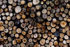 Końcówki beli drewniany tło tonowanie Drewno w stercie - Wizerunek zdjęcia royalty free