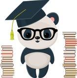 Kończąca studia panda z książkami Obrazy Royalty Free
