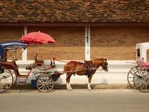 Końscy frachty w i stary ściana z cegieł lampang miasto Zdjęcie Stock