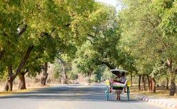 Końscy fury przewożenia turyści na drodze w Bagan, Myanmar Obrazy Stock