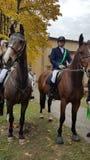 Końscy jeźdzowie przy uniwersytetem Kosice Slovakia 14-10-2017 obrazy royalty free