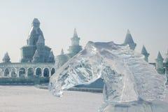 Końska głowa robić lód Obraz Royalty Free