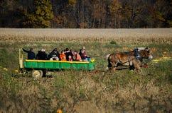Końska i furgon przejażdżka Zdjęcie Royalty Free