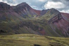 Końska jazda tęczy góra zdjęcie royalty free