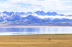 Końska jazda w Pieśniowym kula jeziorze w Kirgistan Zdjęcie Royalty Free