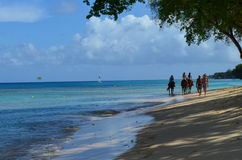 Końska jazda, zachodnia koszt plaża, Barbados Zdjęcie Stock