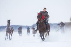Końska rasa na śniegu Obrazy Royalty Free
