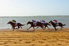 Końska rasa na Sanlucar Barrameda, Hiszpania, Sierpień 2011 Zdjęcia Stock