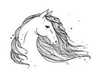 Końska ` s głowa z długą falistą grzywą Obraz Stock