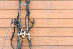 Końska uzda z dekoraci obwieszeniem na niewywrotnej drewnianej ścianie zdjęcia stock