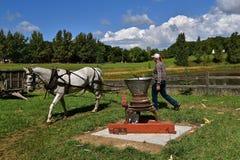 Końska władza zapewnia energię działać starego kukurydzanego sheller obraz royalty free