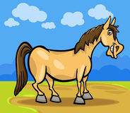 Końska zwierzęta gospodarskie kreskówki ilustracja ilustracja wektor