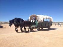 Koński Arizona i furgon zdjęcia royalty free