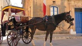 Koński fracht i Malta flaga zbiory
