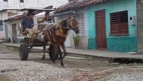 Koński fracht na ulicie zbiory